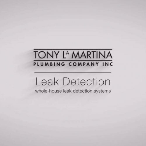Tony LaMartina Plumbing - Leak Detection